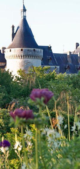 Vinos Y Viñedos Del Valle Del Loira Valle Del Loira Un Viaje Por Francia