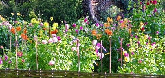 Parc Floral de La Source © C. Mouton