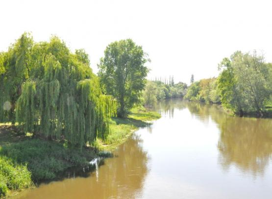 Rochefort sur Loire - Crédit photo Claire Pothier (8)