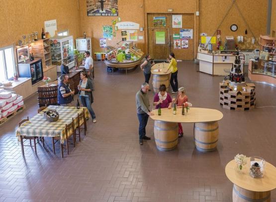 vins-loire-viticulteur-delaunay-montjean-©drouet (2)