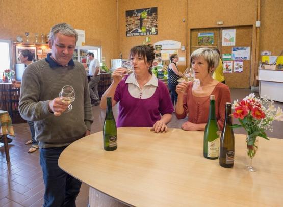 vins-loire-viticulteur-delaunay-montjean-©drouet (5)