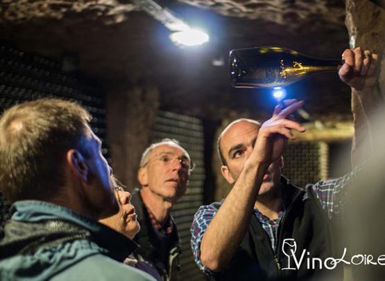 VINOLOIRE, WINE-TOURS