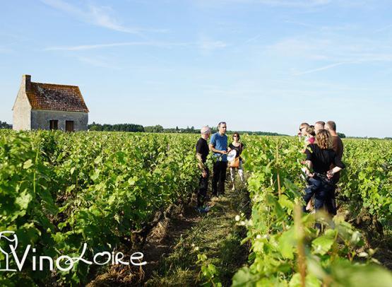 Vinoloire---Credits-Vincent-Delaby--10--3