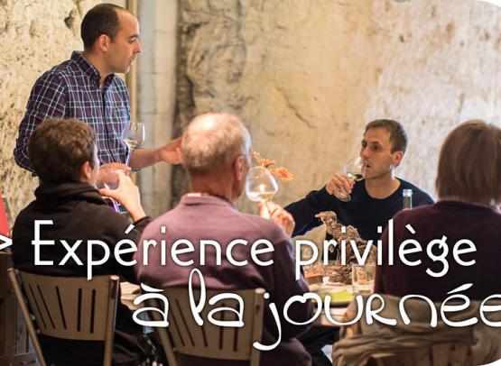 Vinoloire---Credits-Vincent-Delaby--4--3