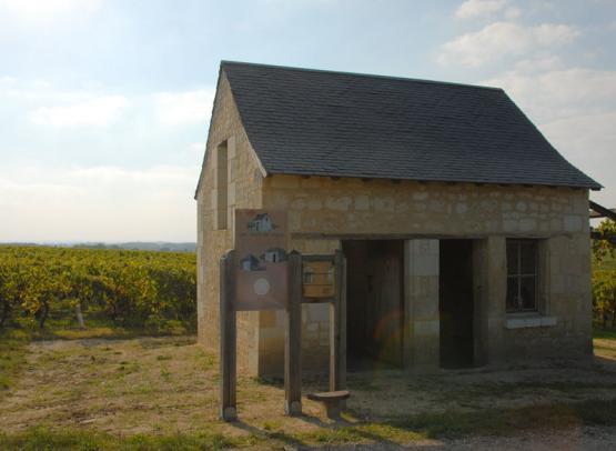 maison audebert - loge de vigne - © francois audebert