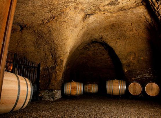 18-Domaine Saint Arnoul-cave-29 janvier 2013 copy