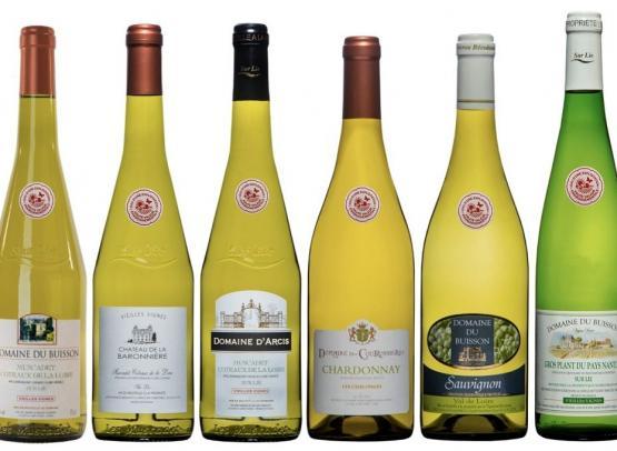 nos-vins-blancs-hve