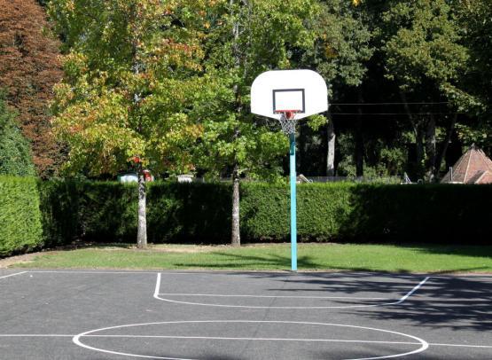 04-Terrain basket