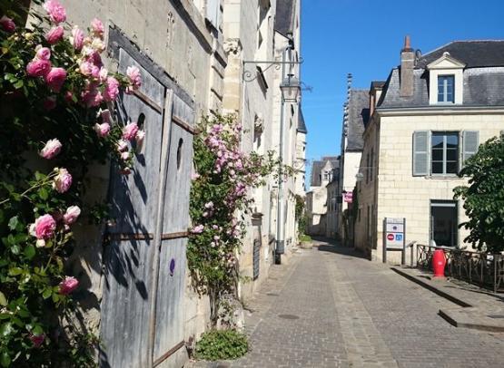 ACVL-Chinon-gite-Chambord--6-