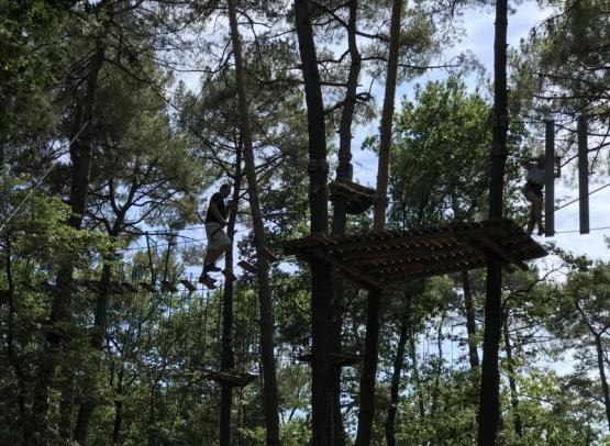 Accrobranche - St benoit la forêt