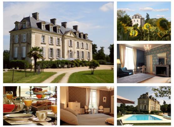 Chateau-La-Mothaye-BnB-Loire-Brion