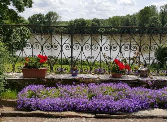 Gîte-Le-Buisson-Chalonnes-sur-Loire-49-hlo9