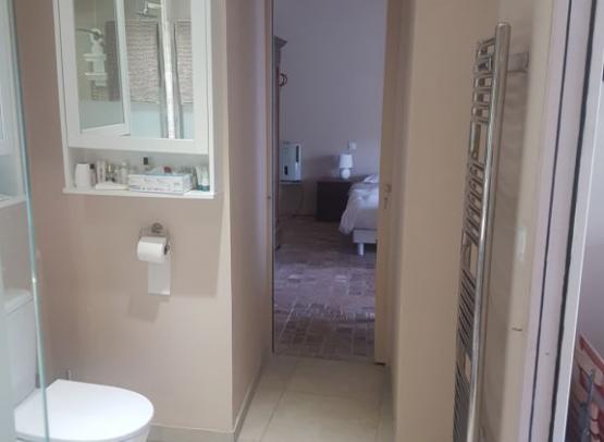 bathroom-reverse-2