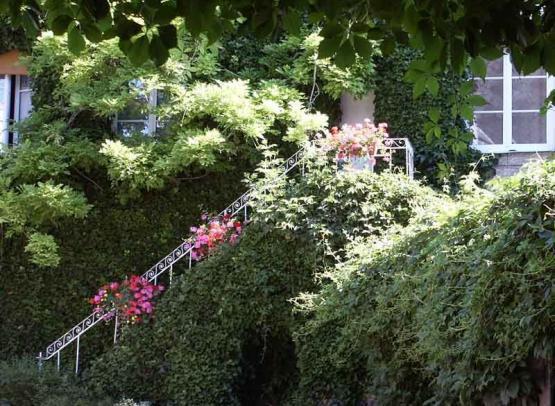 ecu de france - escalier - © annie bennedum