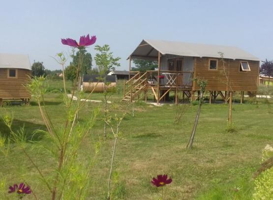 Lodge Africa 5 fleur