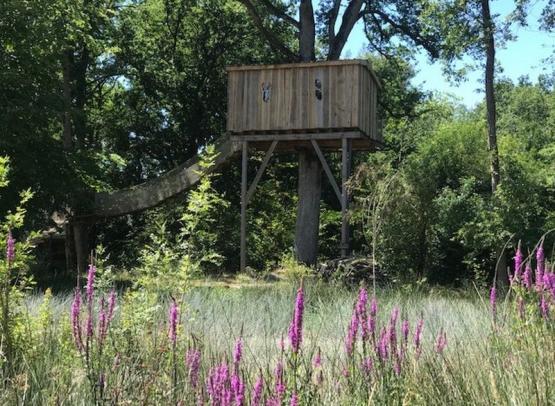 hebergementsinsolites- cabane-domainedelarochebellin-descartes-valdeloire
