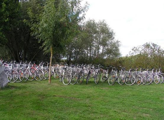 location vélo Camping la Guyonnière La Pommeraye 49