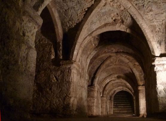 Chateau de Montargis