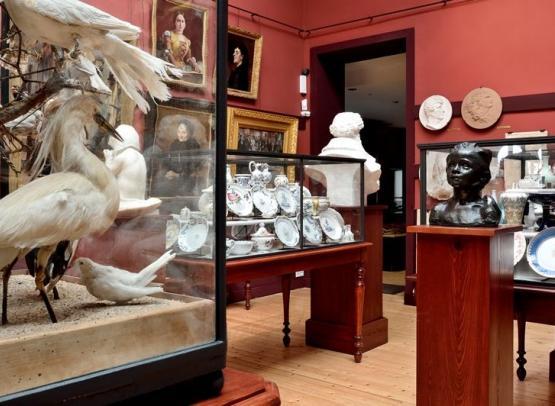 musée Joseph-Denais_salle des beaux-arts_1