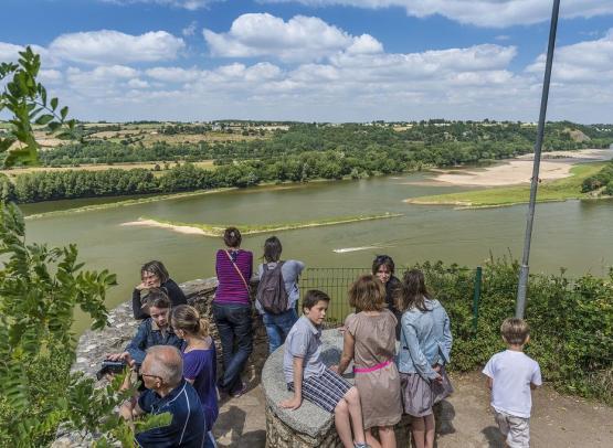champalud-champtoceaux-panorama-loire-©D.Drouet-3442