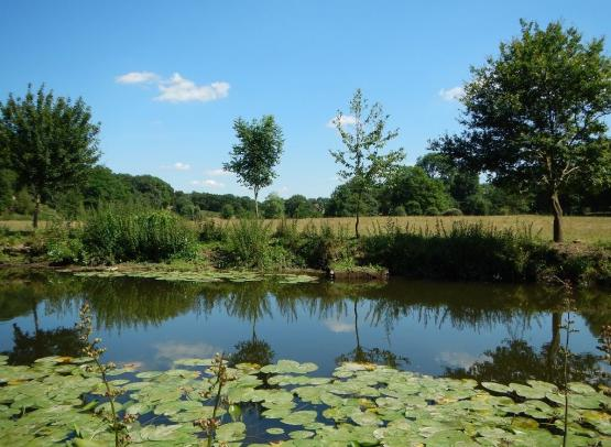 riviere-nature-st-crespin-sur-moine-anjou-nantes-cholet-osezmauges