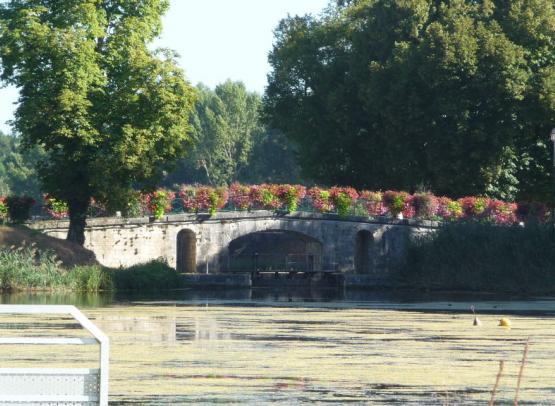 Châtillon sur Loire  mantelot - 10 septembre 2016 (44)