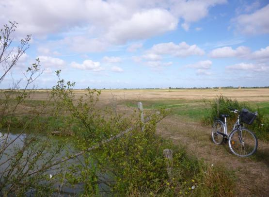 Vélo_Marais modif