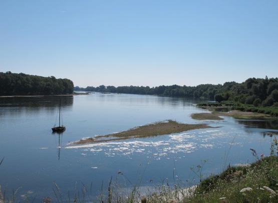 Loire méandres de Guilly avec gabare (Copier)