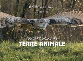 animal 5