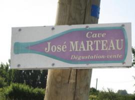 DOMAINE JOSE MARTEAU