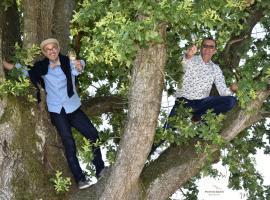 deux frères dans l'arbre