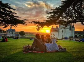 pique-nique-panoramique-chateau-amboise-FSL