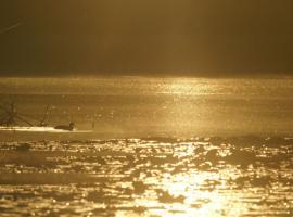 Un mardi soir au bord de l'eau avec Sologne Nature Environnement ©Alexandre Roubalay