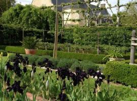 Iris au Domaine de Poulaines