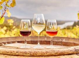 verres-vins-lamoureux