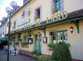 hotel-auberge-a-la-Tete-de-Lard-La-Ferte-Imbault-3