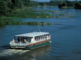 bateau-promenade-loire-montjean-ligeriade-denieul-©D (7)