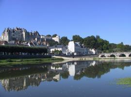 (10)vue-ville-et-chateau-de-st-aignan©CDT41