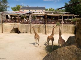 BIOPARC_Camp des girafes (1)